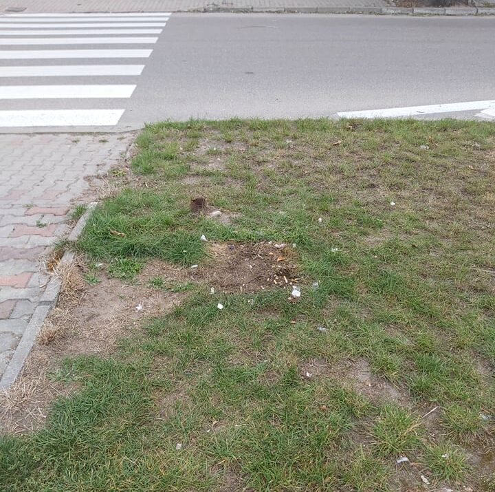 Znikające kosze w centrum Żuromina